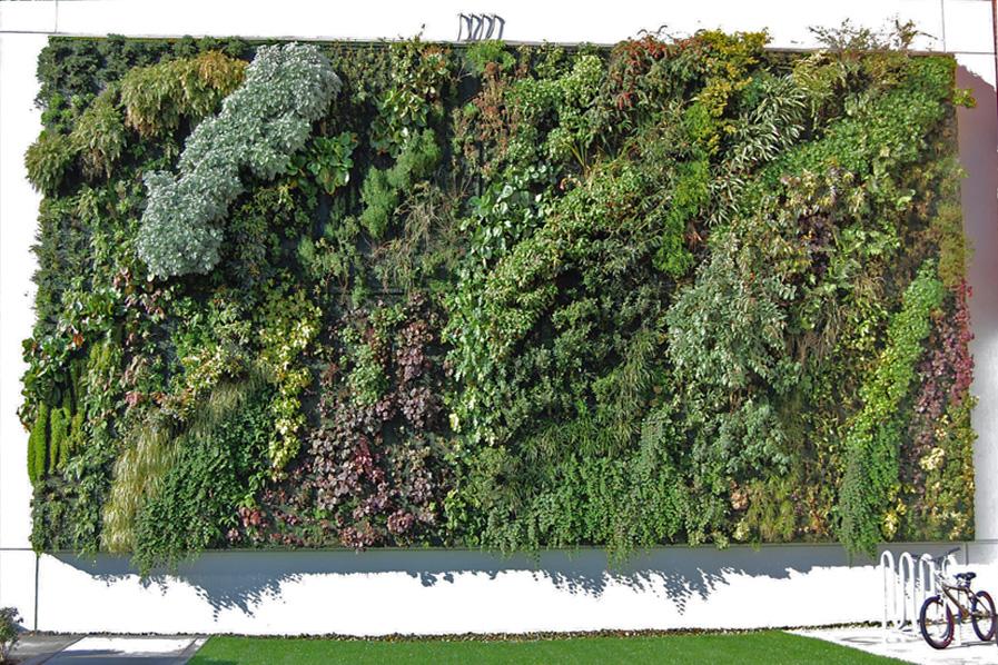 vertikale gärten – grüne pflanzenwände gegen alltagsgrau, Garten seite